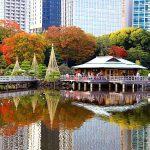 จุดชมใบไม้เปลี่ยนสี-Hama Rikyu Park