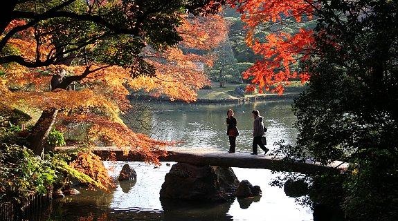 จุดชมใบไม้แดง-Rikugien Park