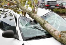 ขับรถชนแบบไม่มีคู่กรณี แจ้งเคลมประกันอย่างไร